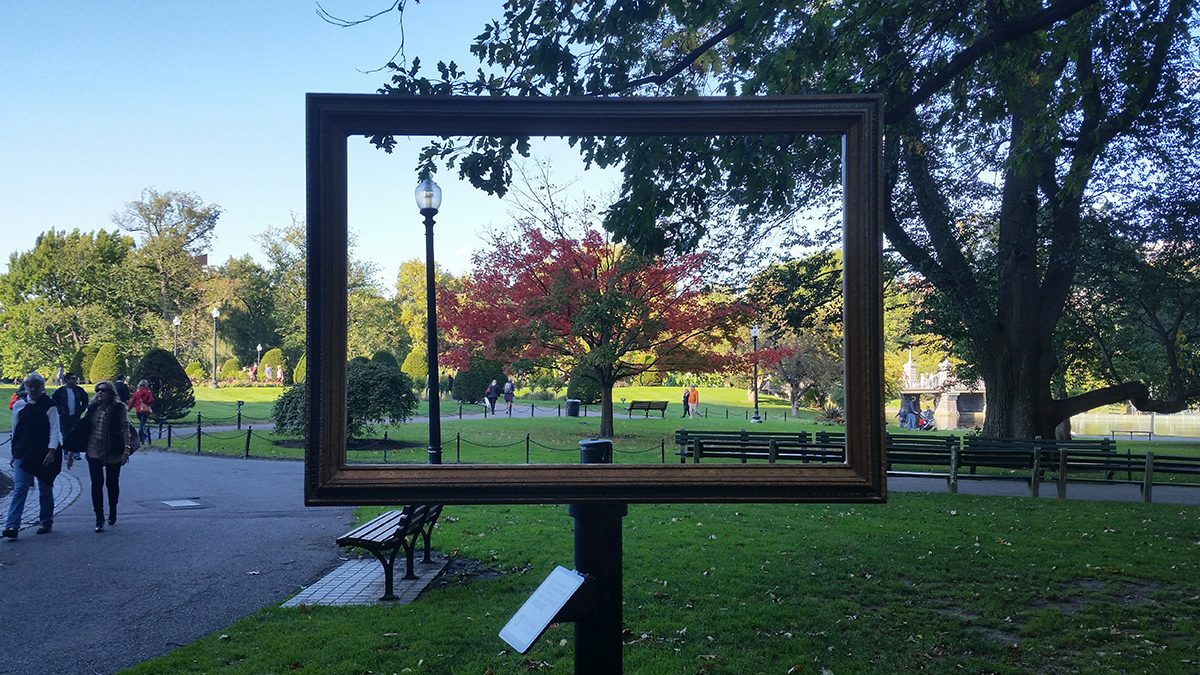 Friends Of The Public Garden Has Set Up Three Picture Frames Around The  Park.Photo By Yiqing Shao