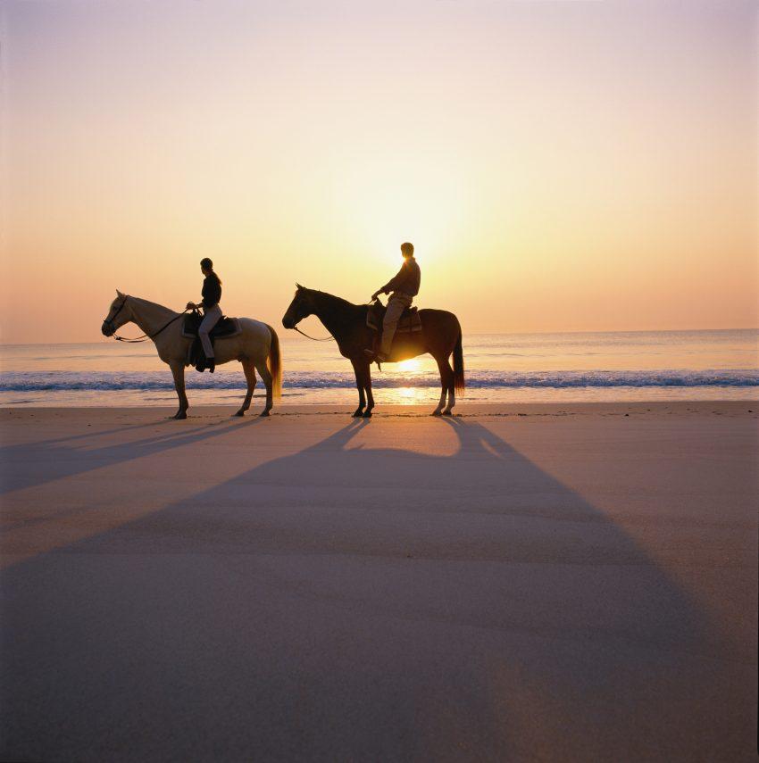 horseBeach_SnFyQptu97lhwZzNomLDYGt18q0ABlZBh