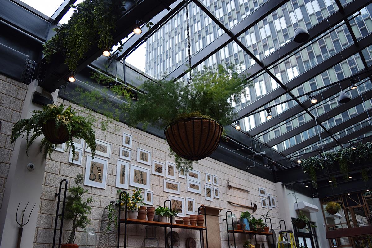 Terra at Eataly Boston