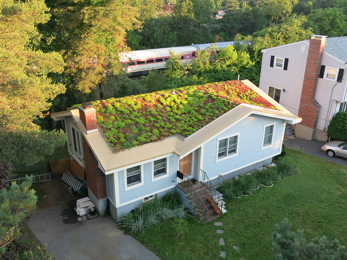 Recover Green Roofs Will Turn Your Regular Old Roof Into A