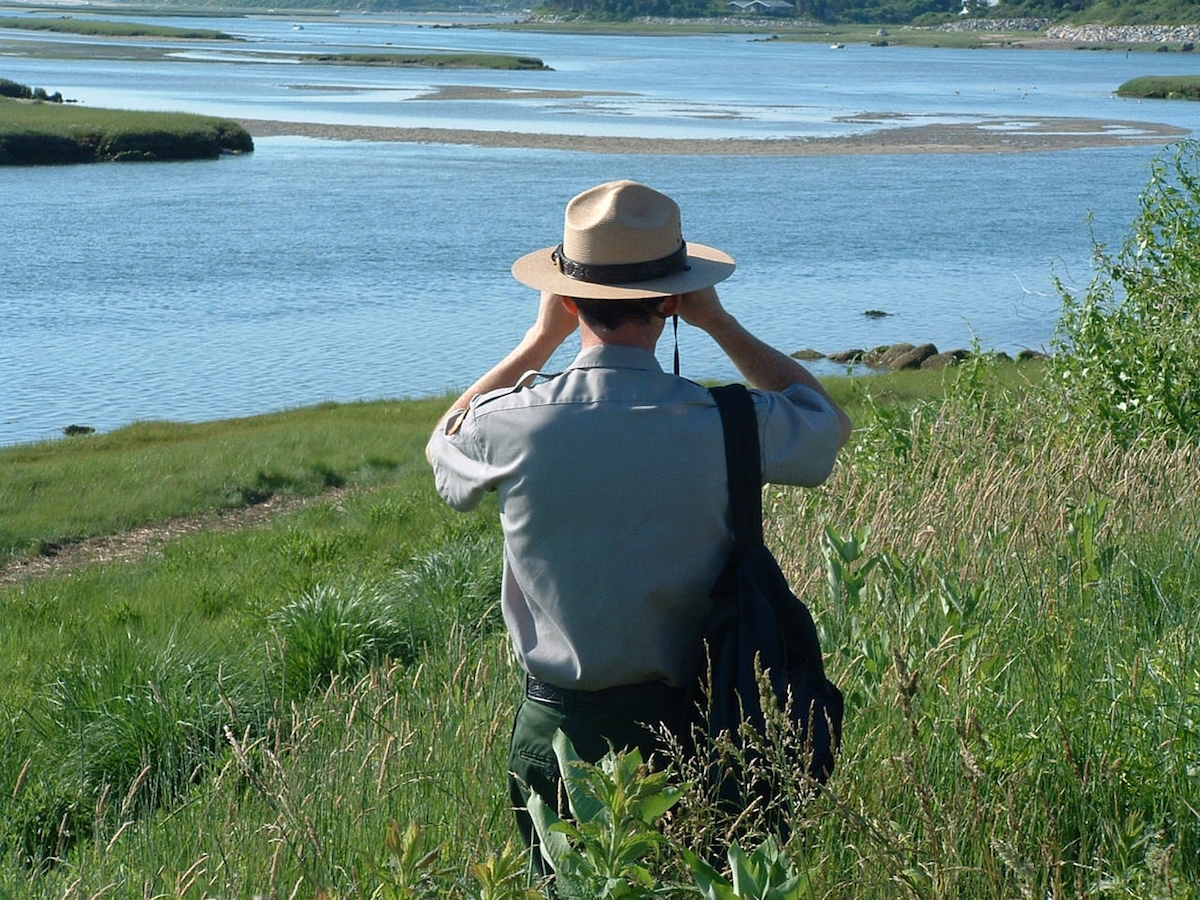 A national park ranger looks out over the sea