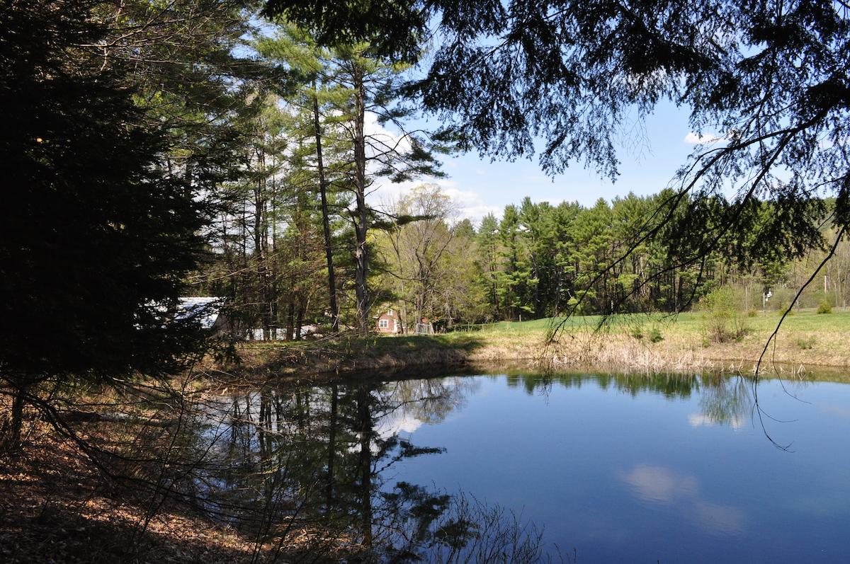 Pond at Saint-Gaudens National Historic Site.