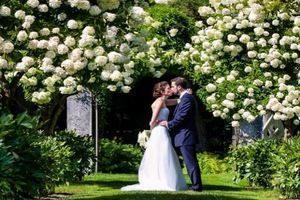 Follow Boston Weddings on Instagram