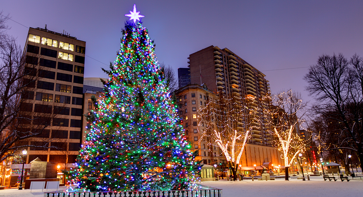 - The Best Photos Of The Boston Christmas Tree Lighting