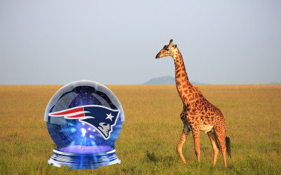 A crystal ball with the Patriots logo inside it is looked at by a giraffe