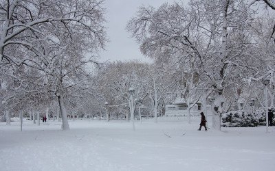 Cambridge Common park near Harvard University campus in Cambridge, MA, USA covered in snow after a blizzard.