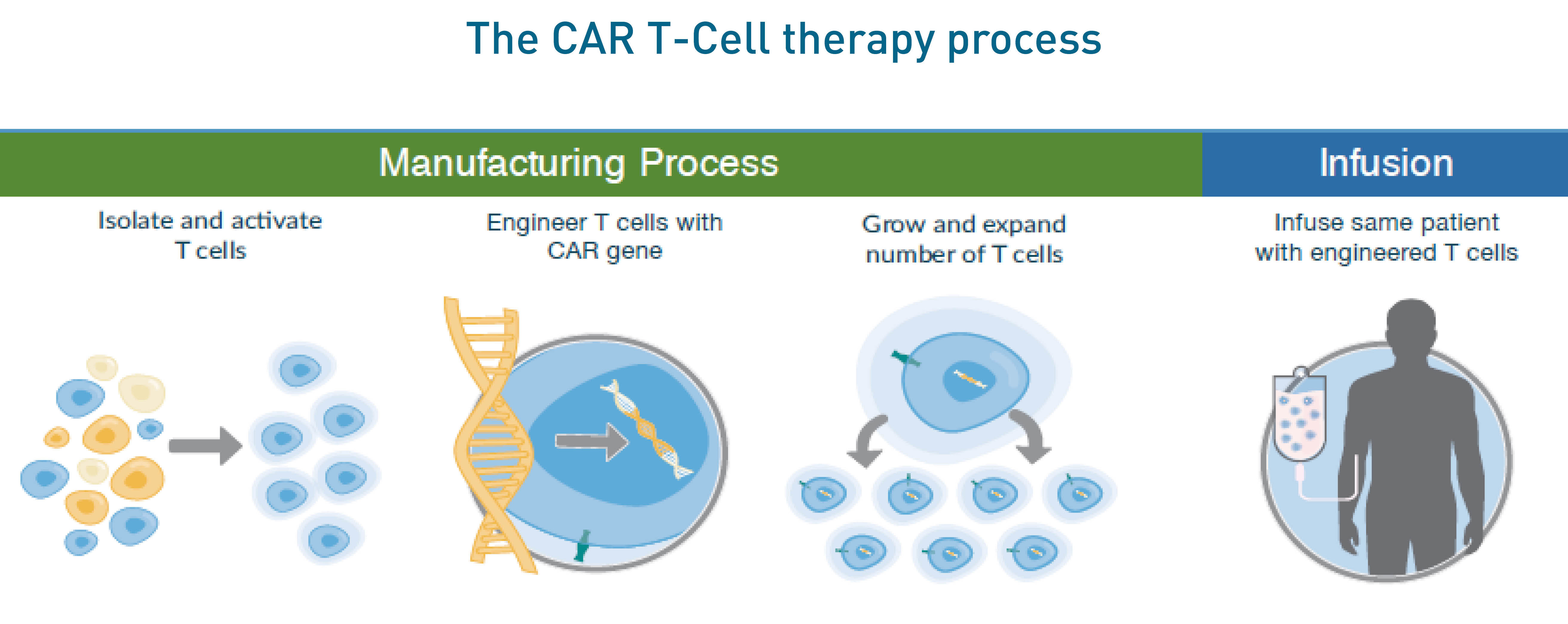 Car T Cell Therapy Offers Lymphoma Patients The Possibility Of Remission