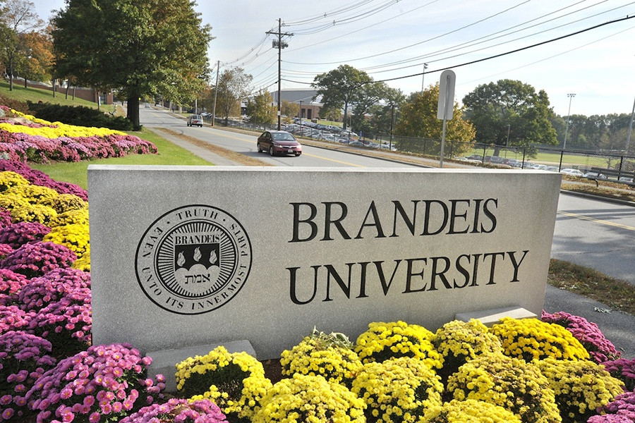 Brandeis Fires Coach After Bias Complaints
