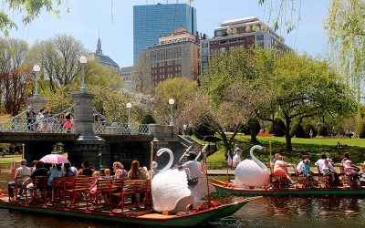 Swan Boats at the Public Garden