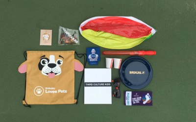 An overhead shot of free things including a frisbee, a beach ball, and a drawstring backpack