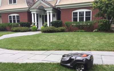 NatureWorks robotic lawn mower Walpole