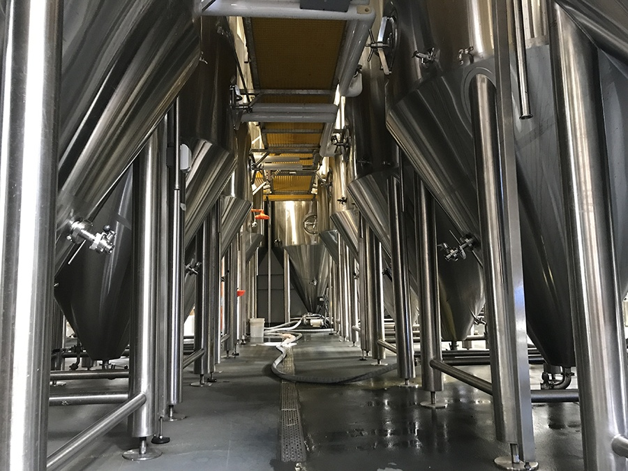 Some of the 19 stainless steel fermenting tanks filling up the production floor at Dorchester Brewing Co.