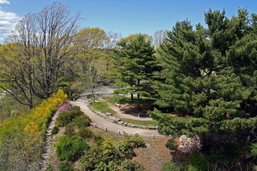 places to propose arnold arboretum