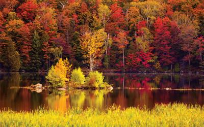 fall road trips vermont foliage tour