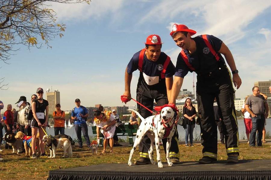 halloween events canine promenade