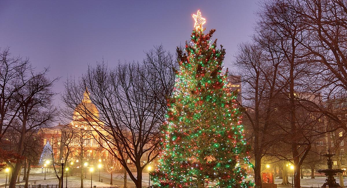 Boston Christmas Tree 2020 Nova Scotia Boston Christmas Tree 2020 | Mpdfab.newyear2020theme.info