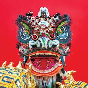 Lion Dance Costume Lunar New Year Chinatown Festival