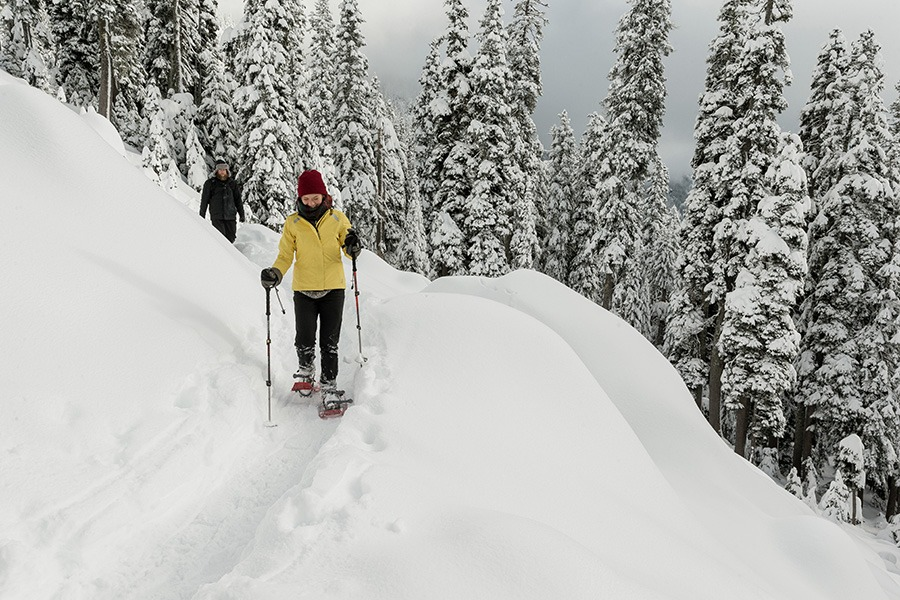 REI snowshoe