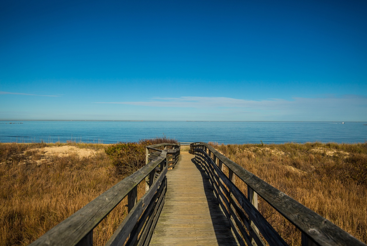 Wait For Summer To Visit Virginia Beach