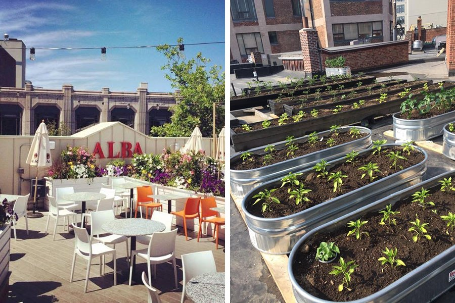 The Alba rooftop patio in 2018.