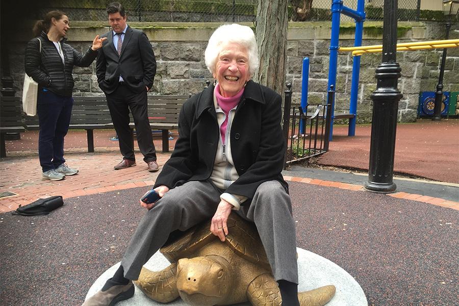 nancy schon turtle