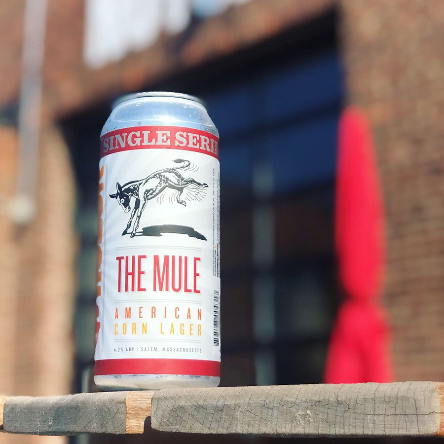 Notch Brewing the Mule Lager