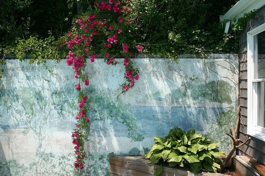 provincetown garden tour
