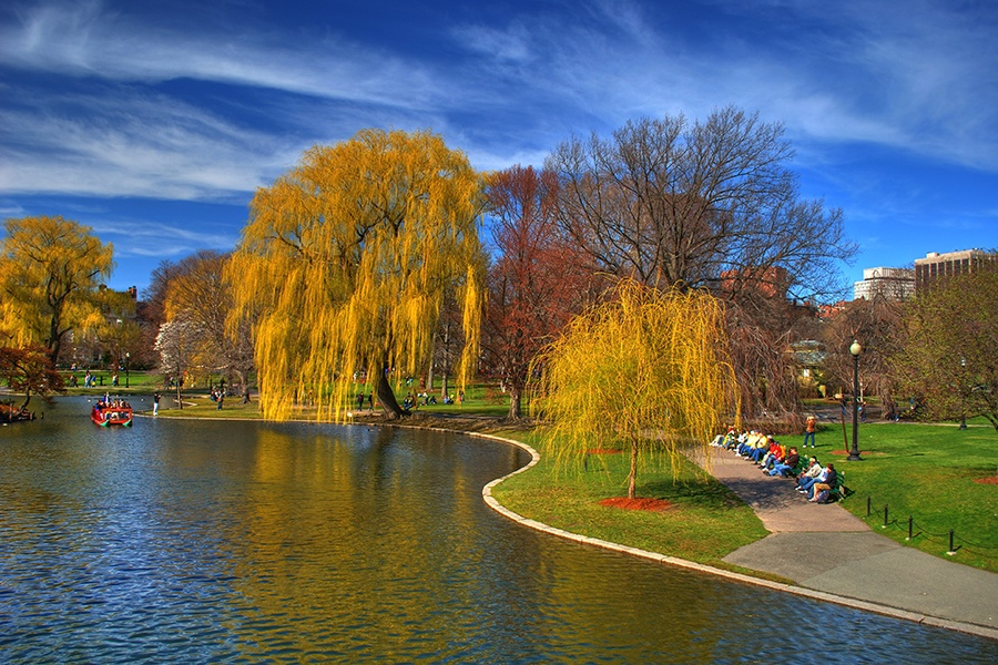 Boston Common spring