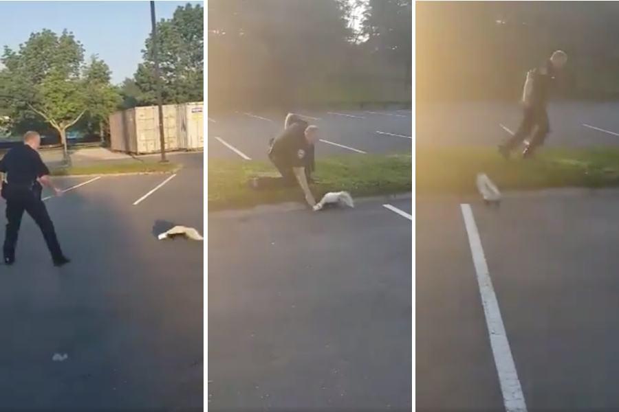 cambridge police skunk