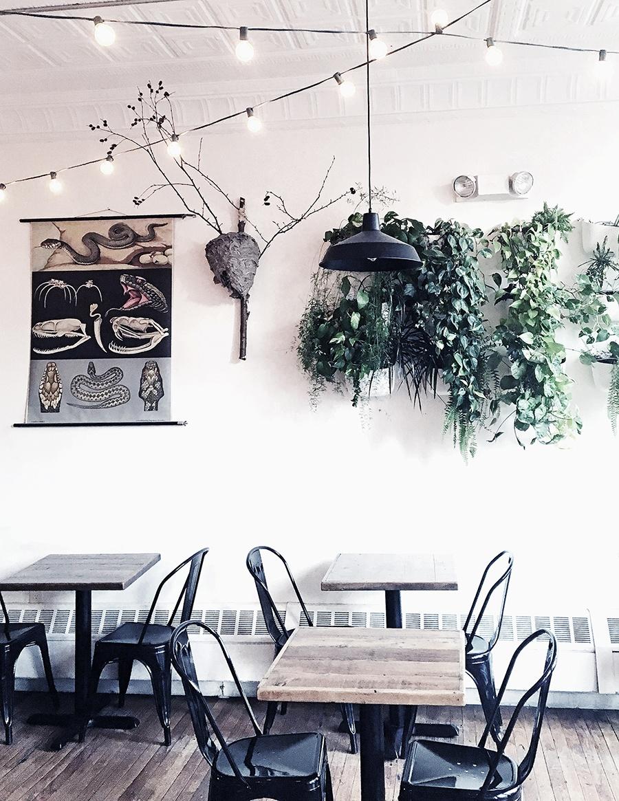 a moody shot inside Curio Coffee