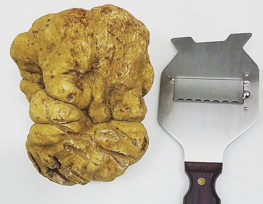 Barbara Lynch 18-ounce truffle