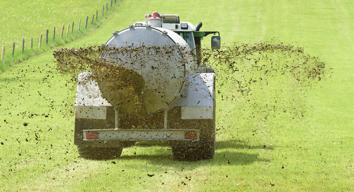 """Oh, Great! There Are High Levels of """"Forever Chemicals"""" in the State's Fertilizer - Boston magazine"""