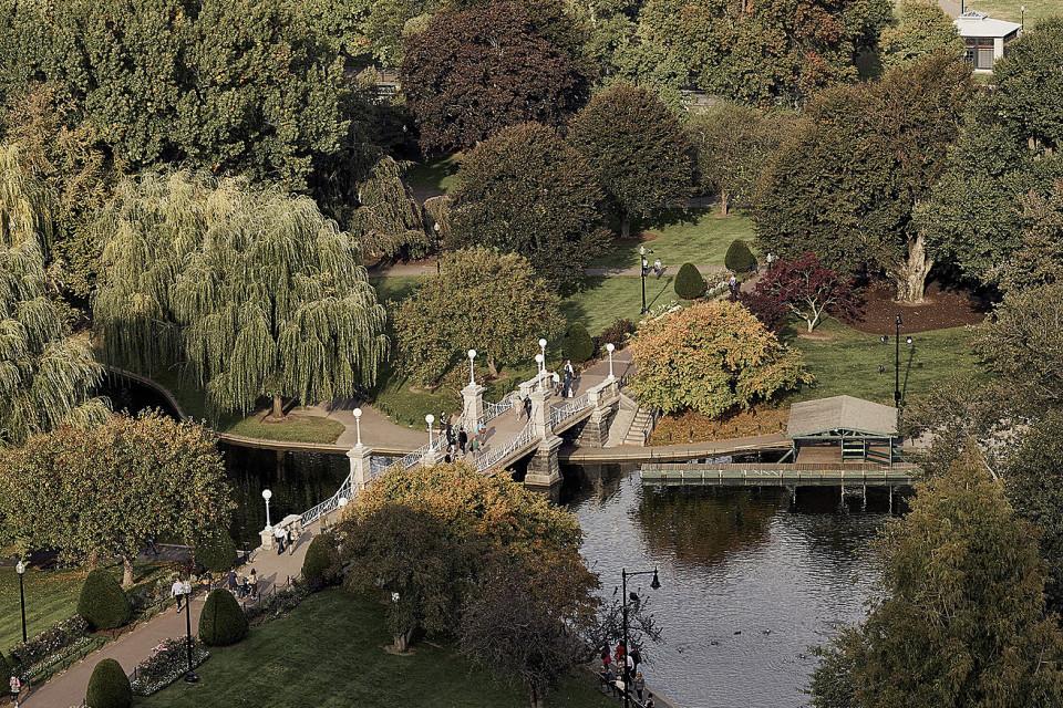 Four Seasons Boston view