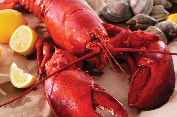 legal sea foods lobster