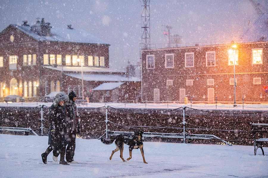 winter walk boston