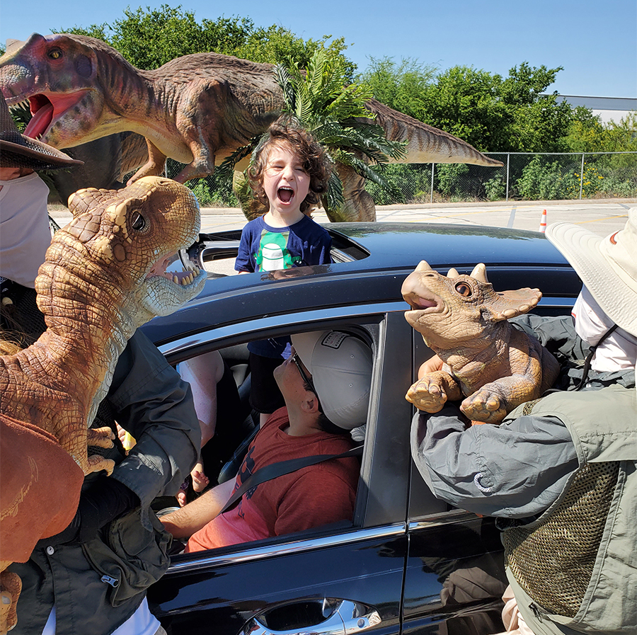 child in car with dinosaurs