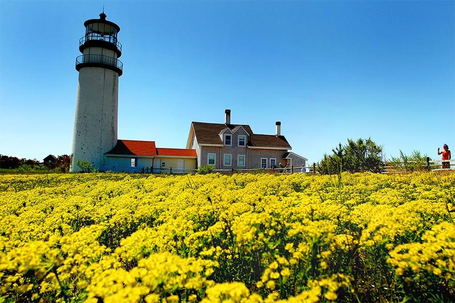highland light lighthouse