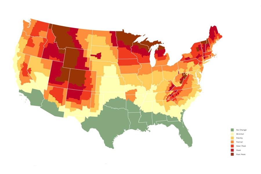 2021 fall foliage map