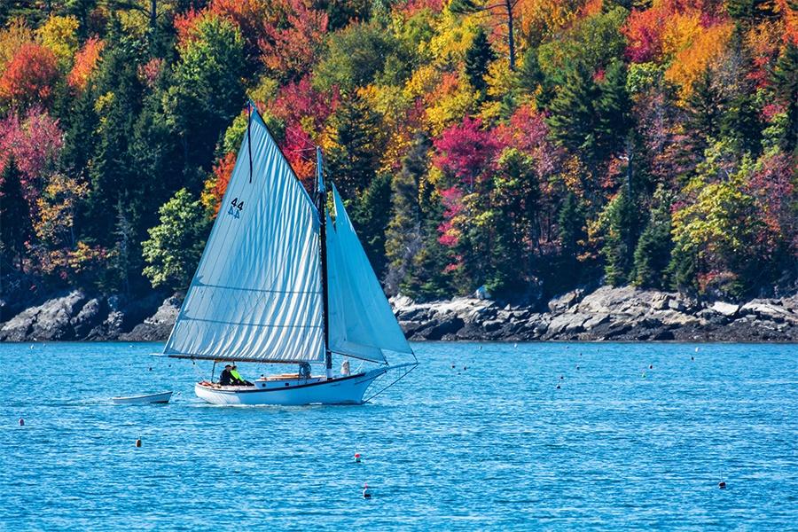 sailboat next to fall foliage