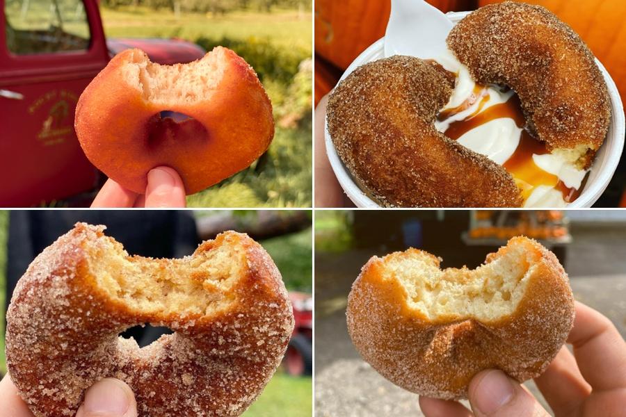 cider donut map